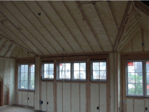Pilli Custom Home on Aberdeen Creek - Home Spray Foam Insulation - 9